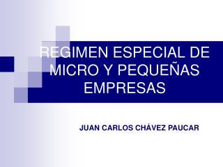 REGIMEN ESPECIAL DE MICRO Y PEQUEÑAS EMPRESAS