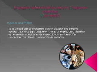 Régimen laboral de la micro y pequeña empresa (ley  mype )
