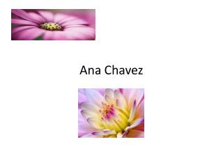 Ana Chavez
