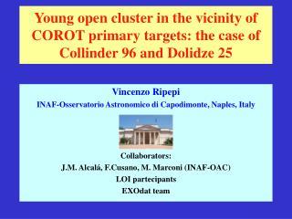 Vincenzo Ripepi   INAF-Osservatorio Astronomico di Capodimonte, Naples, Italy Collaborators: