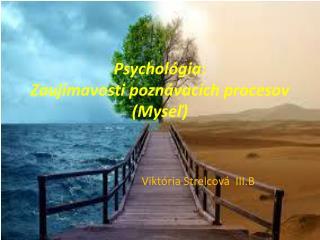 Psychológia: Zaujímavosti poznávacích procesov (Myseľ)