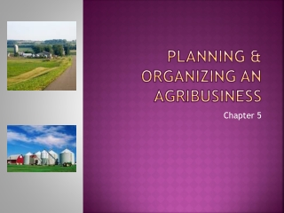 Planning and Organizing an Agribusiness