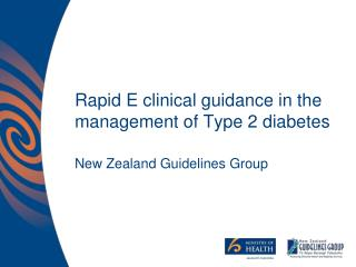 Rapid E clinical guidance in the management of Type 2 diabetes