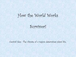 How the World Works Survivor!