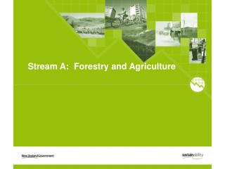 Stream A:  Forestry and Agriculture