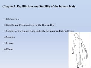 Chapter 1. Equilibrium and Stability of the human body:  1.1 Introduction