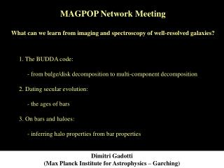 Dimitri Gadotti (Max Planck Institute for Astrophysics – Garching)