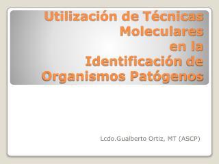 Utilización  de  Técnicas Moleculares en la  Identificación  de  Organismos Patógenos