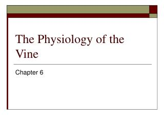The Physiology of the Vine