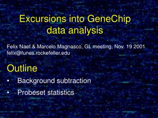 Felix Naef & Marcelo Magnasco, GL meeting, Nov. 19 2001 felix@funes.rockefeller Outline