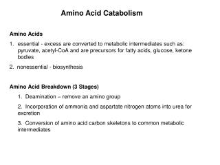 Amino Acid Catabolism