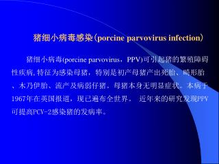 猪细小病毒感染( porcine parvovirus infection )