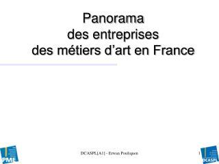 Panorama  des entreprises  des métiers d'art en France