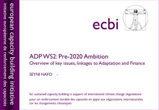 ADP WS2: Pre-2020 Ambition Overview of key issues, linkages to Adaptation and Finance