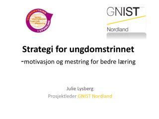 Strategi for ungdomstrinnet - motivasjon og mestring for bedre læring