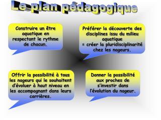 Le plan pédagogique