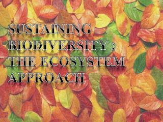 SUSTAINING BIODIVERSITY :  THE ECOSYSTEM APPROACH