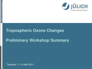 Tropospheric Ozone Changes Preliminary Workshop Summary