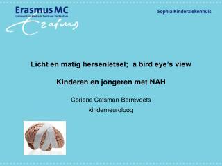 Licht en matig hersenletsel;  a bird eye's view Kinderen en jongeren met NAH