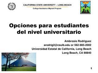 Opciones para estudiantes del nivel universitario