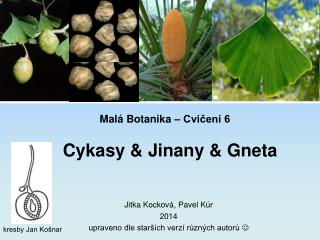 Mal� Botanika � Cvi?en� 6