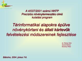 dr. Pálmai Ottó Gyulai Balázs Kemény Péter