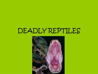 DEADLY REPTILES