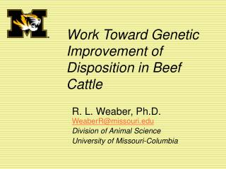 Work Toward Genetic Improvement of Disposition in Beef Cattle