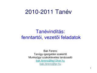 2010-2011 Tan v