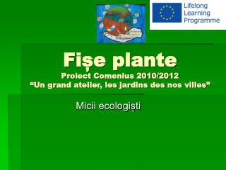 """F ișe  plante Proiect Comenius 2010/2012 """" Un grand atelier, les jardins des nos villes """""""