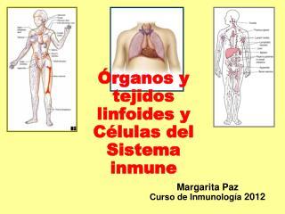 Órganos y tejidos linfoides y Células del Sistema inmune