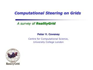 Computational Steering on Grids