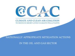NATIONALLY APPROPRIATE MITIGATION ACTIONS IN THE OIL AND GAS SECTOR