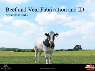 Beef and Veal Fabrication and ID Sessions 6 and 7