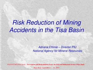 Risk Reduction of Mining Accidents in the Tisa Basin