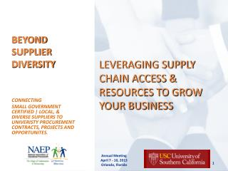 BEYOND SUPPLIER DIVERSITY