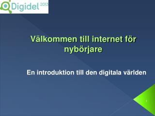 Välkommen till internet för nybörjare