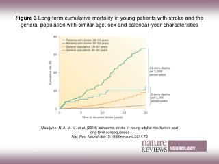 Maaijwee, N. A. M. M.  et al.  (2014)  Ischaemic stroke in young adults: risk factors and