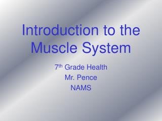 Introduction to the Muscle System
