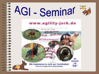 AGI - Seminar