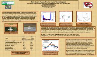 Malodorant Fluxes From a Swine Waste Lagoon