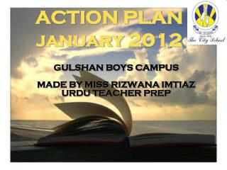 ACTION PLAN  january  2012