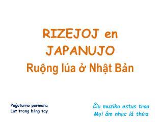 RIZEJOJ en  JAPANUJO  Ruộng lúa ở Nhật Bản