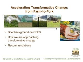 Accelerating Transformative Change:  from Farm-to-Fork