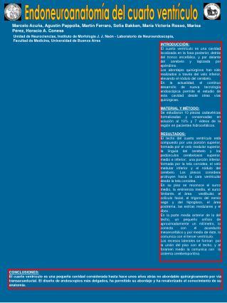 Endoneuroanatomía del cuarto ventrículo