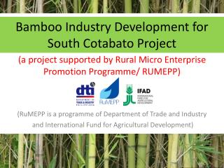 Bamboo Industry Development for South Cotabato Project