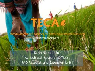 Karin Nichterlein Agricultural  Research Officer FAO Research and Extension Unit
