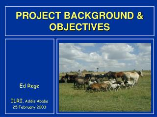 PROJECT BACKGROUND & OBJECTIVES