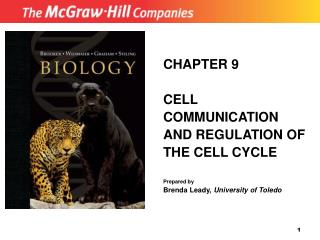 CHAPTER 9 CELL COMMUNICATION AND REGULATION OF THE CELL CYCLE Prepared by