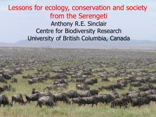 Lessons for ecology, conservation and society  from the Serengeti Anthony R.E. Sinclair